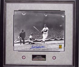 TED WILLIAMS 4