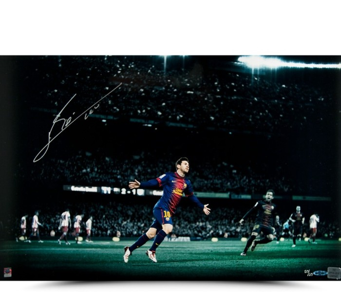 leo-messi-autographed-colors-of-the-game-picture-81242_3